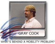 mobility, stability, motor control, Gray Cook