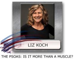 Liz Koch the Psoas - Psoas Muscle - Psoas And Midline