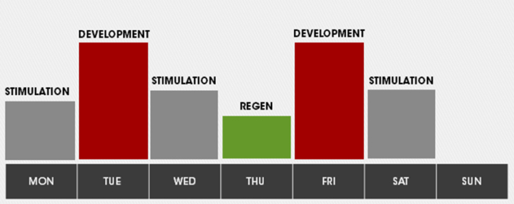 joel-jamieson-conditioning-program-training-week-overview